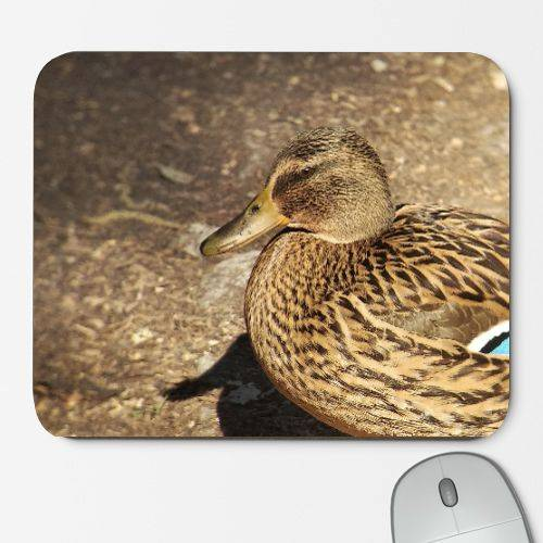 https://www.positivos.com/110519-thickbox/real-duck-female-mouse-mat.jpg