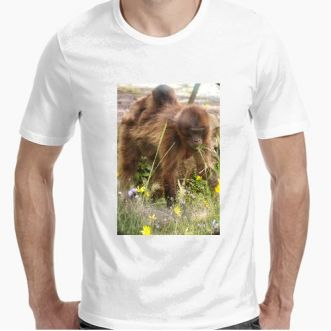 https://www.positivos.com/110534-thickbox/gelada-t-shirt.jpg
