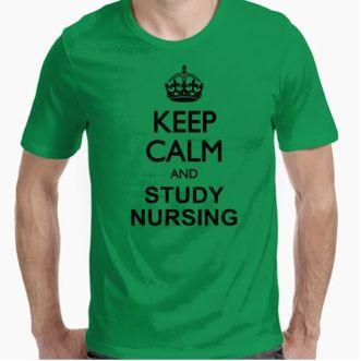https://www.positivos.com/119209-thickbox/keep-calm-nursing.jpg