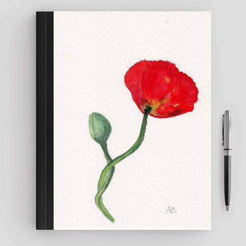 https://www.positivos.com/121739-thickbox/amapola-solitaria-roja.jpg