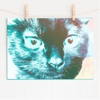 https://www.positivos.com/126320-thickbox/el-gato-azul.jpg
