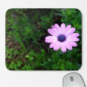 https://www.positivos.com/150609-thickbox/flor-de-otono.jpg