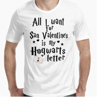 https://www.positivos.com/172010-thickbox/camiseta-harry-potter-san-valentin.jpg