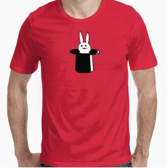 https://www.positivos.com/82278-thickbox/conejo-en-sombrero.jpg