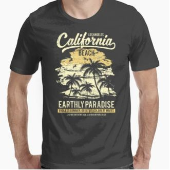 https://www.positivos.com/83114-thickbox/california-beach.jpg